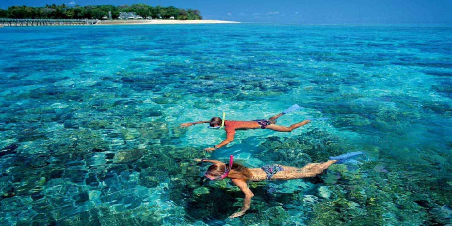 private snorkeling trips