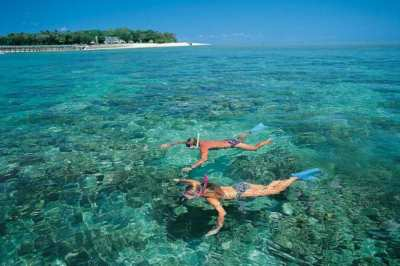 Private snorkelling trip to a near by reef.